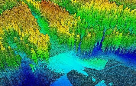 A Japanese Perspective: LiDAR forest data for resource analysis in Japan
