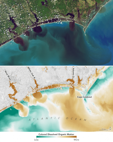 Visible and infrared data from Landsat